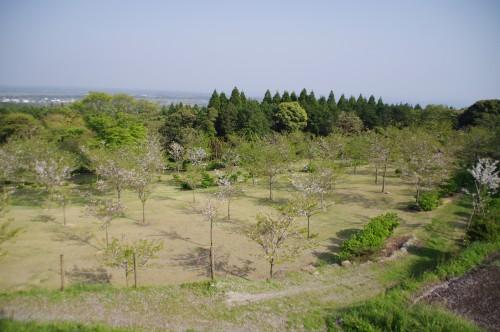 瀬戸桜公園を瀬戸公園から見たところ