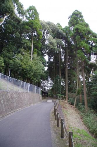木々に囲まれた道を進んでいくと・・・